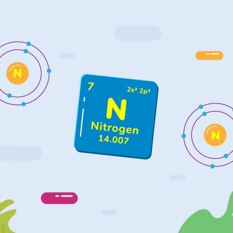 Kimia Kelas XII IPA: Nitrogen