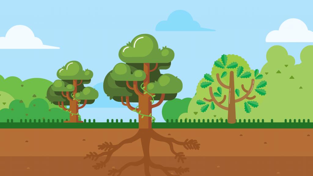 Pahamify - Jaringan Tumbuhan