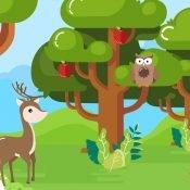 Biologi Kelas 11: Mengenal Jaringan Hewan dan Fungsinya