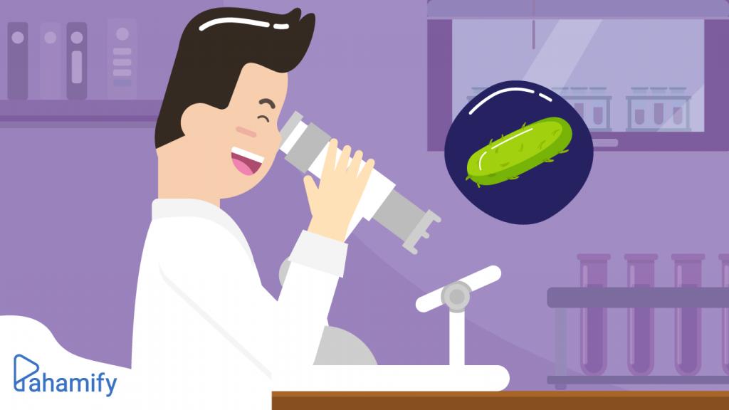 Pengertian Monera dan Peran Bakteri Dalam Kehidupan Manusia