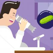 Biologi Kelas 10: Monera dan Peran Bakteri dalam Kehidupan
